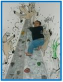 Young boy climbing a small rock wall.